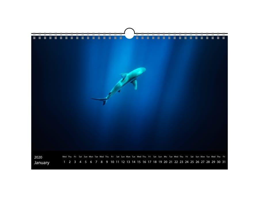 Kalender Dezember 1 900x720 - Home